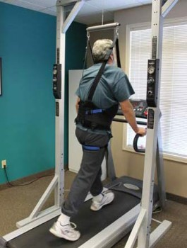 harnessed-walking-265x350